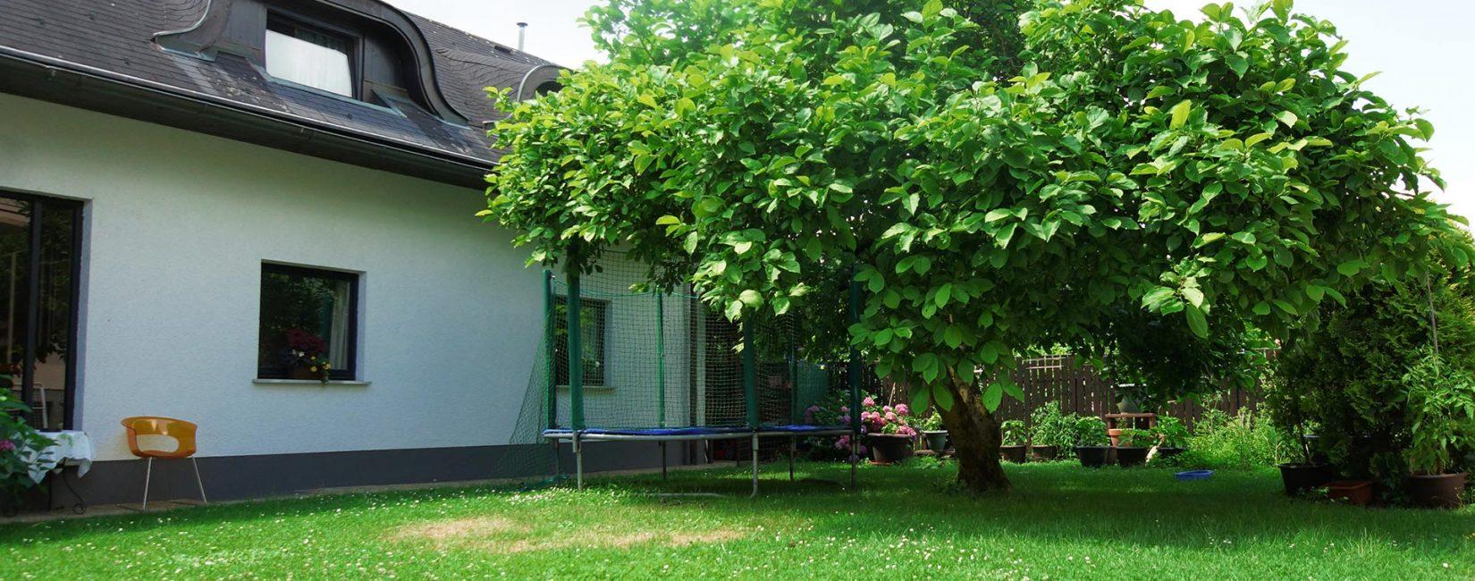 Quiet & Green Environment
